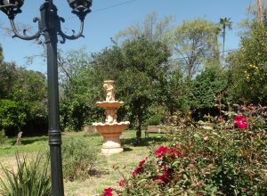 vita-behavioral-outside-fountain
